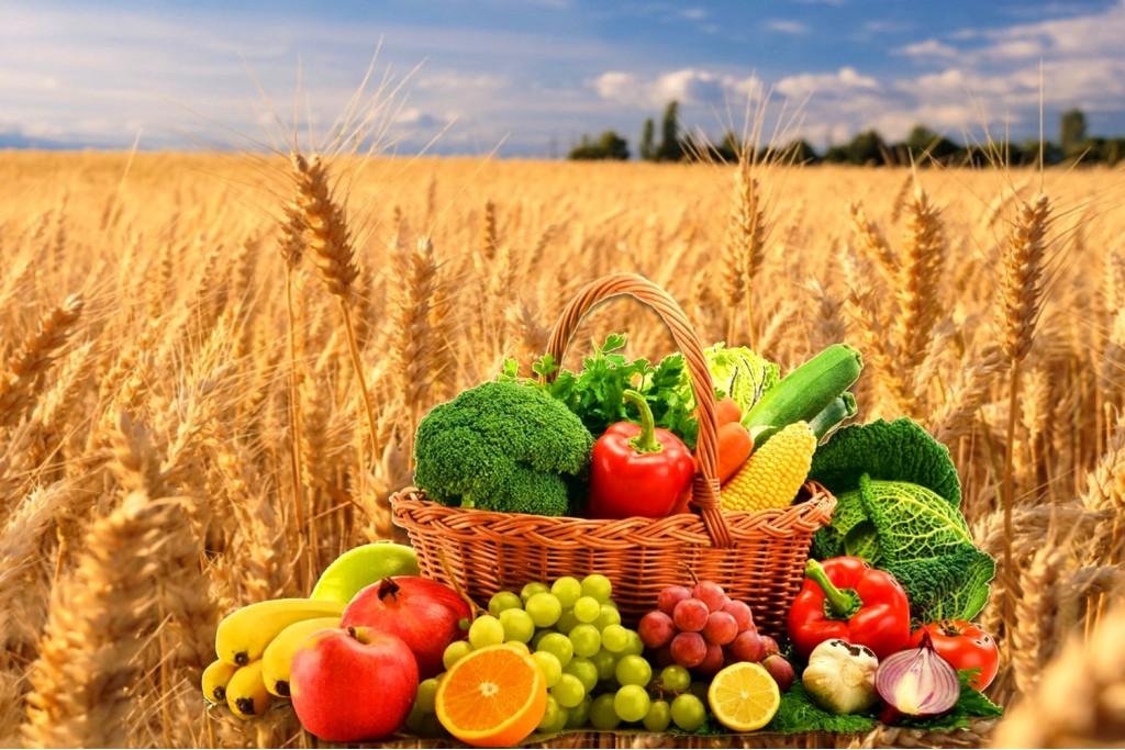 Kakšno kombinacijo morajo imeti naravni vitamini, da lahko z njimi dosežemo vrhunski učinek?